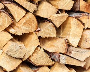 Premium kiln-dried firewood